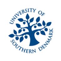 Universidad Odense2